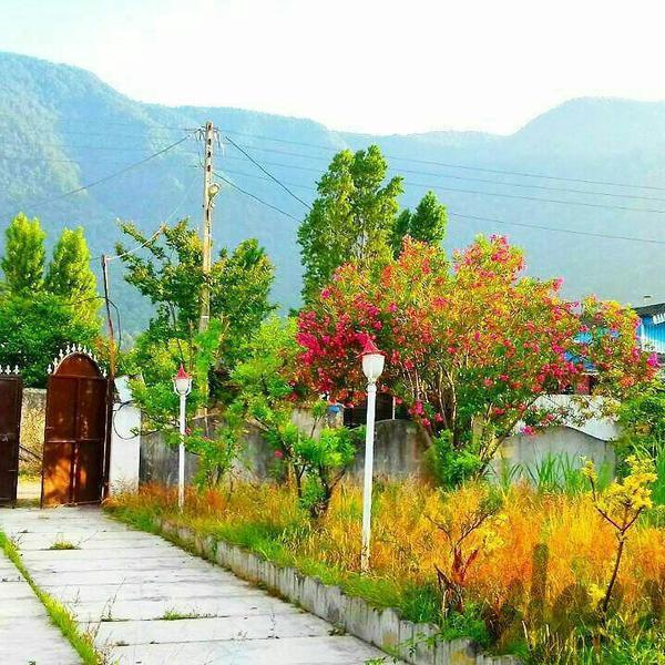 ویلا باغ 1300 متری چلندر|خانه و ویلا|نوشهر|دیوار