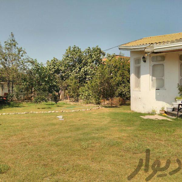 محمودآباد ۶۰۰ متر ویلایی|خانه و ویلا|بابلسر|دیوار