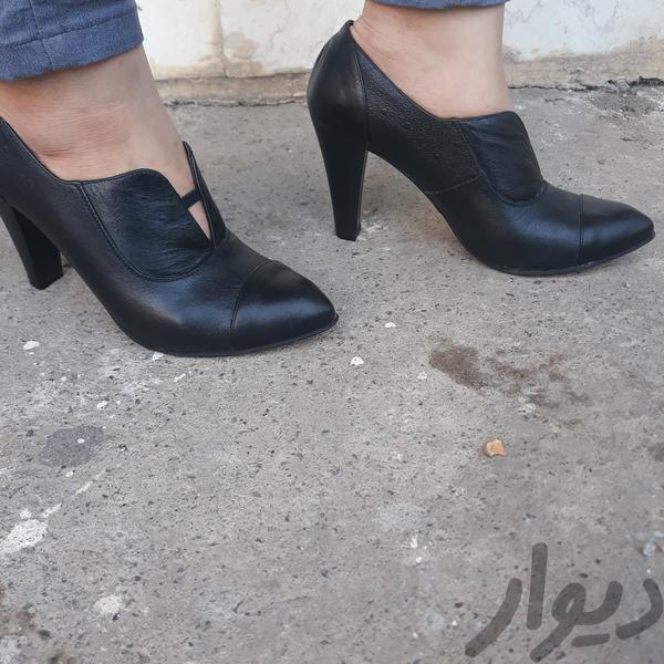کفش چرم برازنده  |کیف_کفش_کمربند|رشت|دیوار