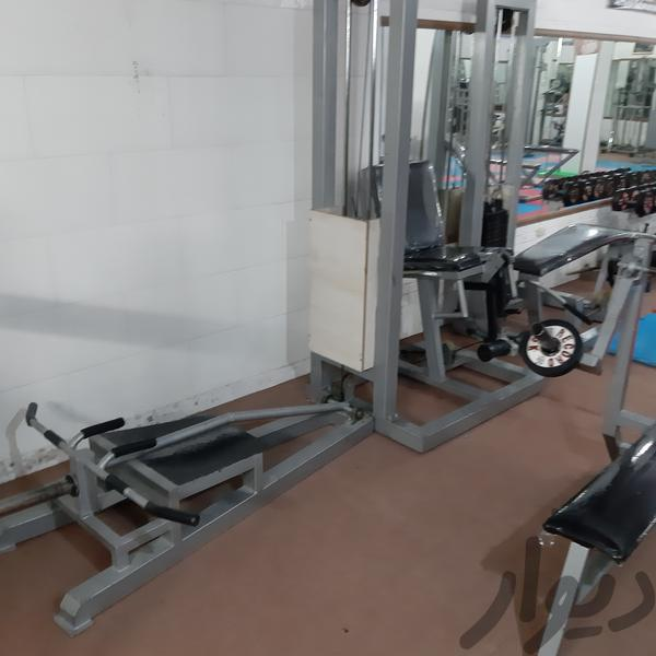 دستگاهای  بدنسازی رویان تجهیزات ورزشی کاشان دیوار