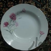 بشقاب گل میخک سایز بزرگ|وسایل آشپزی و غذاخوری|شیراز_سفیر جنوبی|دیوار