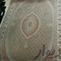 فروش2 عددفرش6متری|فرش و گلیم|شیراز_بلوار رحمت|دیوار