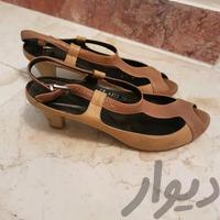 کفش چرم|کیف/کفش/کمربند|تهران_صادقیه|دیوار
