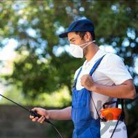 شرکت سمپاشی نابودی حشرات سم پاشی موریانه|نظافت|قم_بنیاد|دیوار